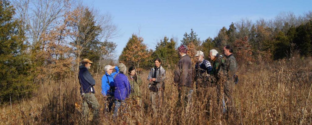 Group looking at dodder (parasitic plant). Photo by Eric Reuter.