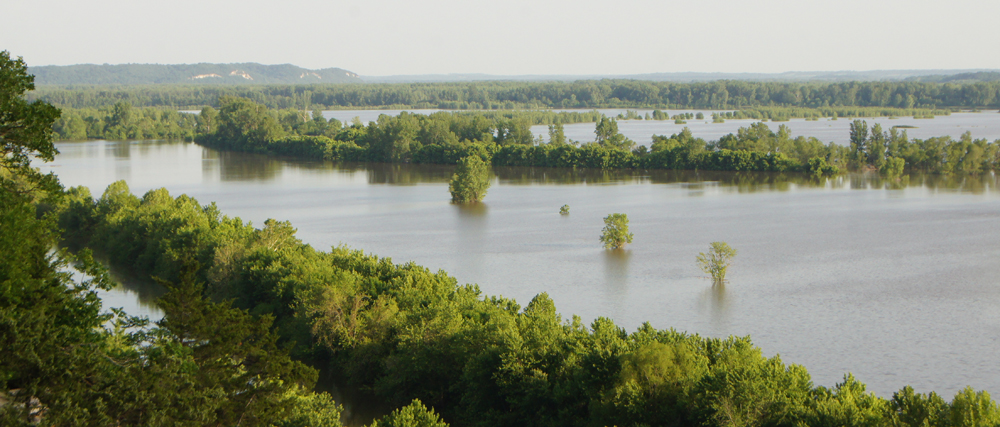 view of the flooded Eagle Bluffs from the overlook